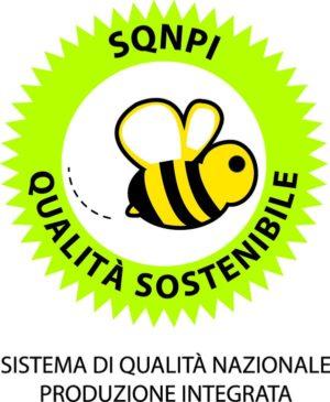 sqnpi-logo